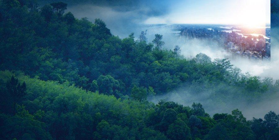 """走进""""中国瀑乡""""贵州安顺 夏日的旅居避暑胜地"""