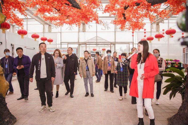 第五届中国西部花卉产业发展大 会兴庆区花卉产业考察及产销对接顺利开展